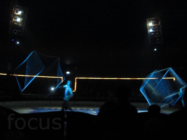 IMG_3962-focus